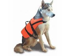 LALIZAS Brassiere chien >30kg