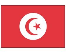 BIGSHIP Pavillon Tunisie 30x45cm