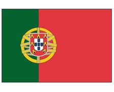 BIGSHIP Pavillon Portugais 30x45cm