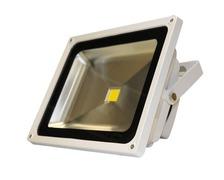 Projecteur de pont à LED 50W (12/24V DC)