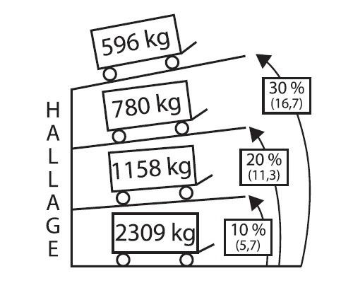 GOLIATH Treuil manuel 596 kg